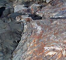 Rock Outcropping at the Sea Shore - Odiorne Point State Park - Rye, NH 04-28-12 by David Lipsy