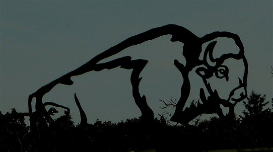In Silhouette by Larry Trupp