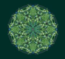 Flower of life mandala by Zoe Gentz