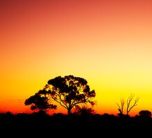 pink sunset by oonaphotography
