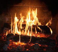 Fire, Open Wood. by glenlea