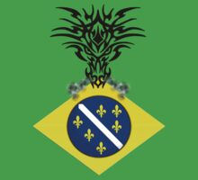 Bosnian Dragon-Brazil World Cup 2014 by MGraphics