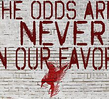Hunger Games the Odds are Never In Our Favor by geekchicprints