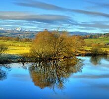 The River Tay, Perthshire, Scotland by DAVY NELSON