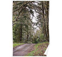 Back Roads of Siletz, Oregon Poster