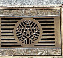 National Mall Street Grate by Allison Patel
