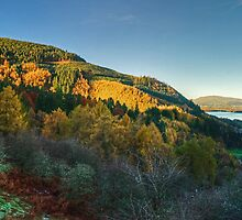 Whinlatter Forest and Bassenthwaite Lake by VoluntaryRanger