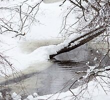 Snow on the Water - SPNHF - Concord, NH 02-24-13 by David Lipsy