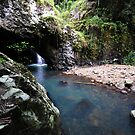 Natural Bridge, Springbrook National Park, Queensland, Australia. by Ralph de Zilva