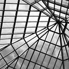 Glass Ceiling by DearMsWildOne