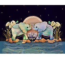 Lotus Flower Elephants of the Rainbow Photographic Print