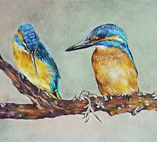 Kingfisher Birds by Prismatixs