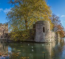 Bishop's Palace, Wells by Robbie Labanowski