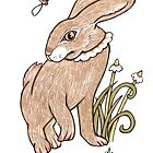 Wee Hare by Anita Inverarity