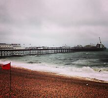 Brighton Pier by jeremyab