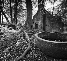 Lumsdale Mill and its Happy Demise BW by Andy Freer