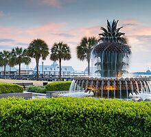 Charleston South Carolina Pineapple Fountain Downtown Waterfront Park by MarkVanDyke