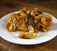 Lovely Chanterelles by Alexandra Lavizzari