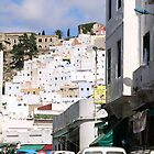UNESCO World Heritage town - Tetouan by Ren Provo