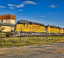 Union Pacific Engine 1768  by Craig  Bellinger Photography