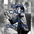 Keep Calm I'm The (11th) Doctor by Crystal Friedman