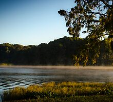 Morning Lake Fog by Douglas Hamilton