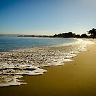 Monterey Bay by Douglas Hamilton