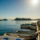 Monterey Boat by Douglas Hamilton