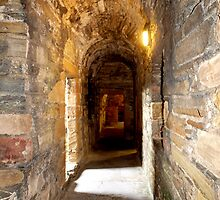 Earls Palace Kirkwall (3) by kalaryder