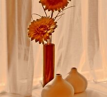 Window Still Life by Alexandra Lavizzari