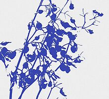 blue dianella berry silhouette  by Rahima