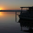 St. Johns River at Dawn by Carol Bailey White