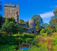 Ireland. Blarney Castle. by vadim19