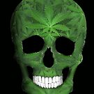 Pot Leaf Skull by TinaGraphics