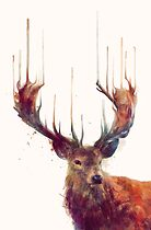 Red Deer by Amy Hamilton