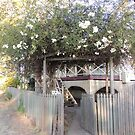 Garden gateway by jaycee
