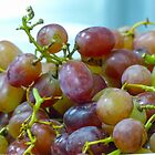 Grapes by Susan S. Kline