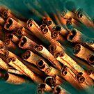 Cinnamon by Anne Seltmann