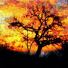 A Tree and the Dawn in Barda Village (zoom for impact) by Dennis Melling