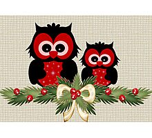 Owls December Photographic Print