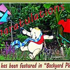 Backyard Photography Banner by Bine