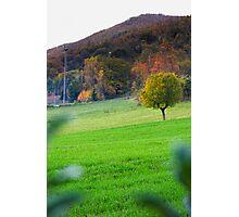 Autumn in Tuscany Photographic Print