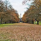 Autumn Gibside by Chris Vincent