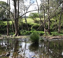 Tallebudgera Creek in May by aussiebushstick