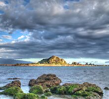 View from Island Bay by Cornelia Schulz