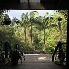 Veranda View by aussiebushstick