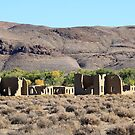 Fort Churchill Ruins, Silver Springs Nevada USA by Anthony & Nancy  Leake