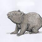 Wombat by SnakeArtist