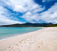 Footprints on the Beach ~ Wineglass Bay by Renee Hubbard Fine Art Photography