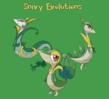 Snivy Evolutions by jonath1991